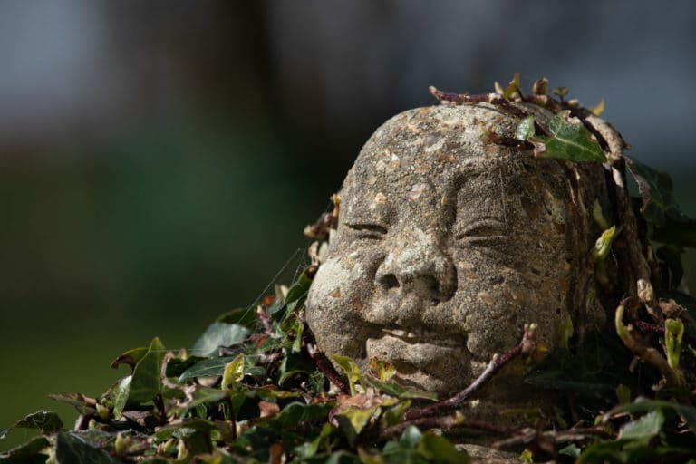 Budda covered in ivy garden statue
